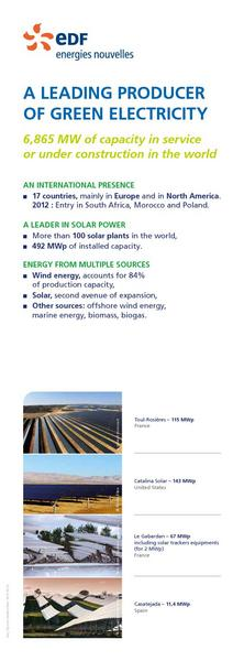 A leading producer of green electricity