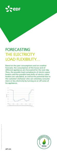 FORECASTING THE ELECTRICITY LOAD FLEXIBILITY…